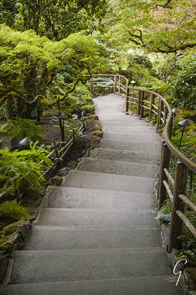 Butchart Gardens Steps Japanese Garden