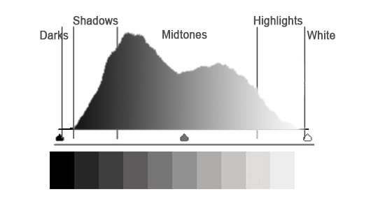A Photo Luminance Histogram