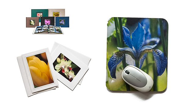 Photography Crafts From Your Photos