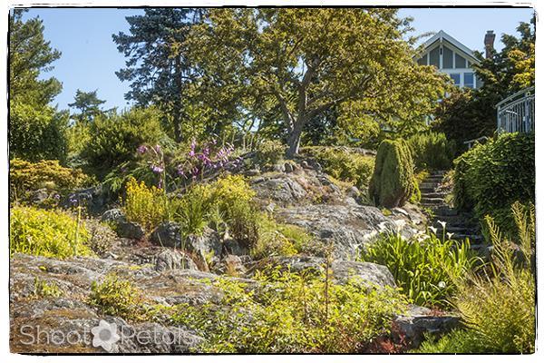Abkhazi Garden landscape and house.
