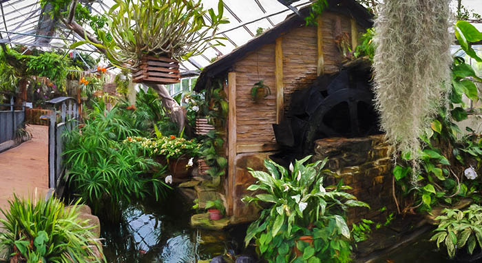 Allan Gardens Conservatory Tropical House