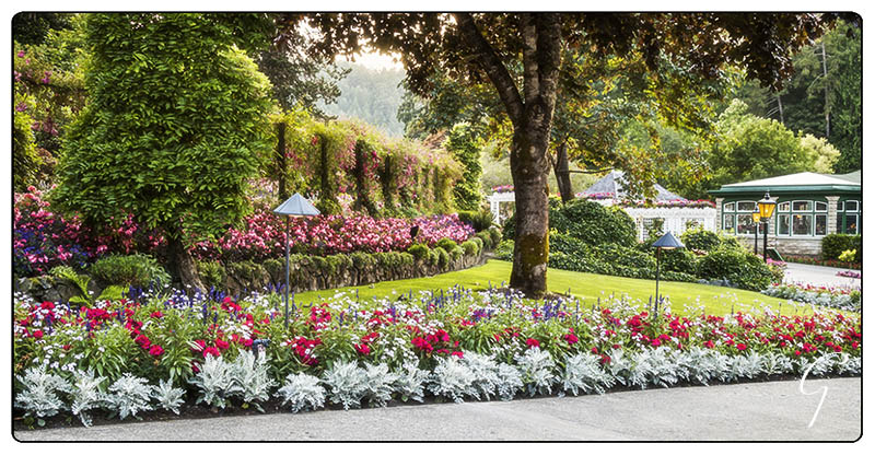 Butchart Gardens Dining Room, Gardens, and Lawn