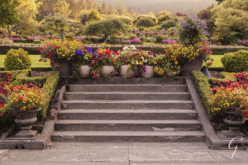 The Italian Garden Late Afternoon Light