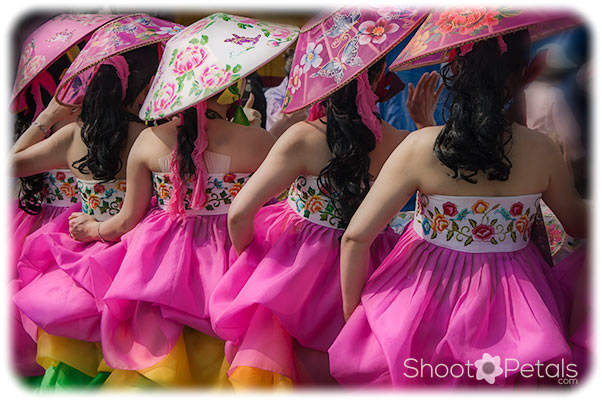 Korean traditional dancers in cherry blossom pink.