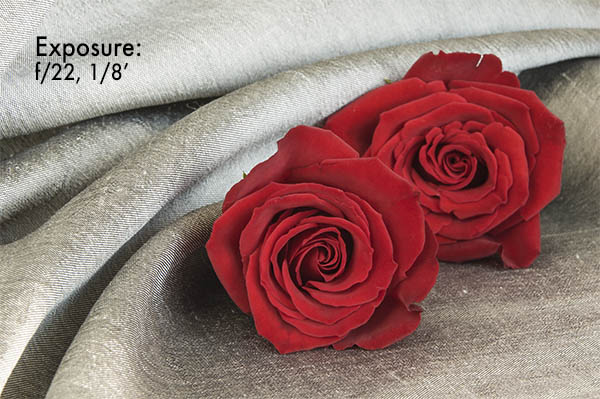 Red Roses On Silk F22