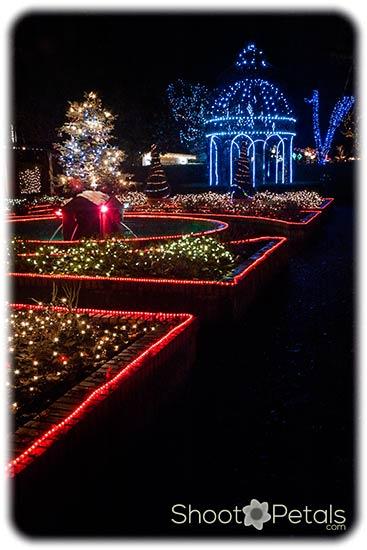 Park Tilford Festival of Lights, Rose Garden