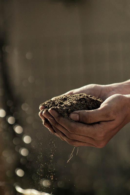 Gardening - Getting Hands Dirty