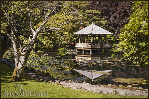The Japanese Garden Pond and Gazebo