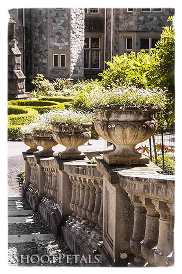 Welcome to Hatley Castle