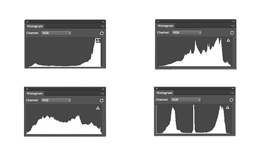 Four Very Different Photo Histograms
