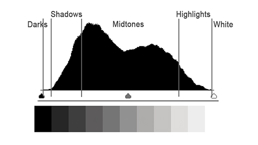 A Photo Luminance Histogram