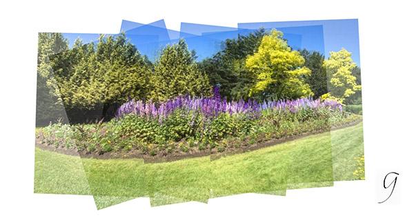 iPhoneography panorama Livingston Lake VanDusen Botanical Garden