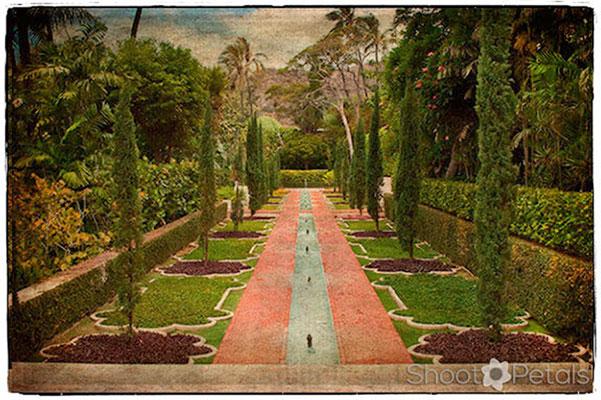 Shangri La Water Gardens Photo Editing