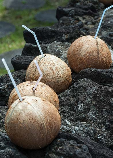 Coconut Drinks At Cheongyeon Falls