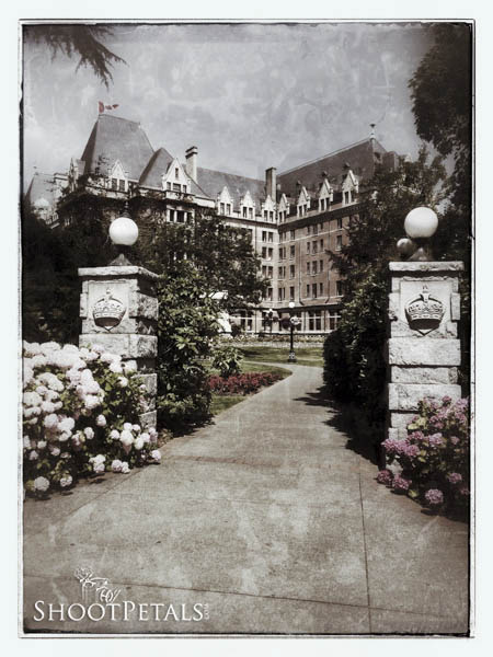 Walk To the Empress Hotel, VIctoria