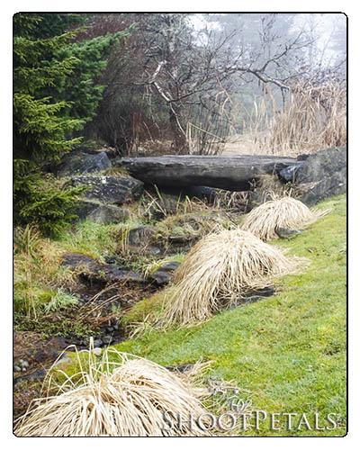 VanDusen Botanical Garden, Leading Lines in Stream, Rocks and Grass