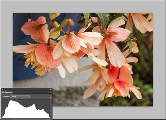 RGB Tonal Map - Photoshop