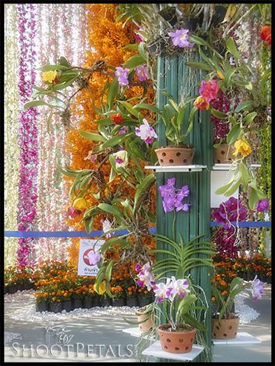 Royal Flora Ratchaphruek, Orchid Pavilion