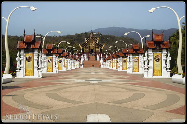 Royal Flora Ratchaphruek Royal Path