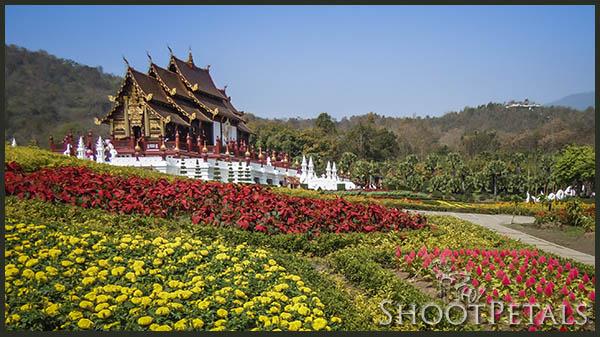 Royal Flora Ratchaphruek, Royal Pavilion and flower beds