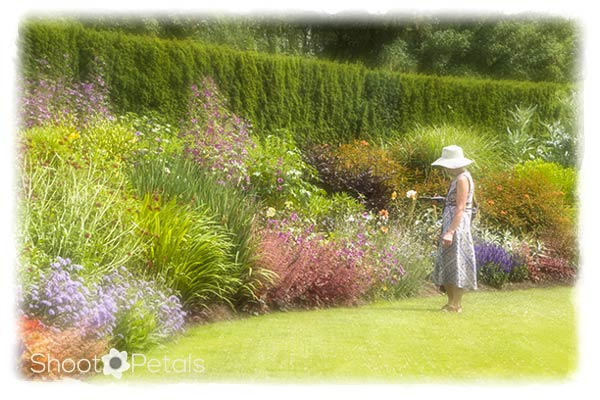 The Great Lawn at VanDusen Botanical Garden