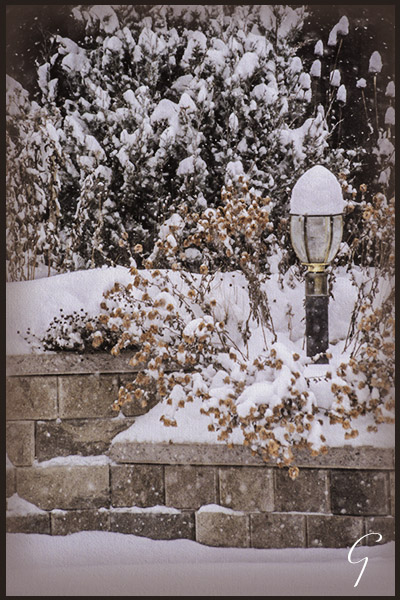 Winter Pictures Garden Lamp Post