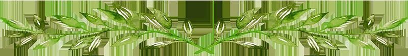 Leaf Element Divider