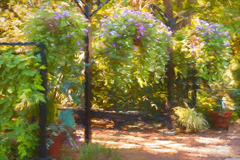 Park and Tilford Botanical Garden