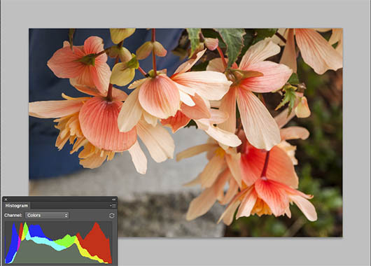 Color Tonal Mapping - Photoshop