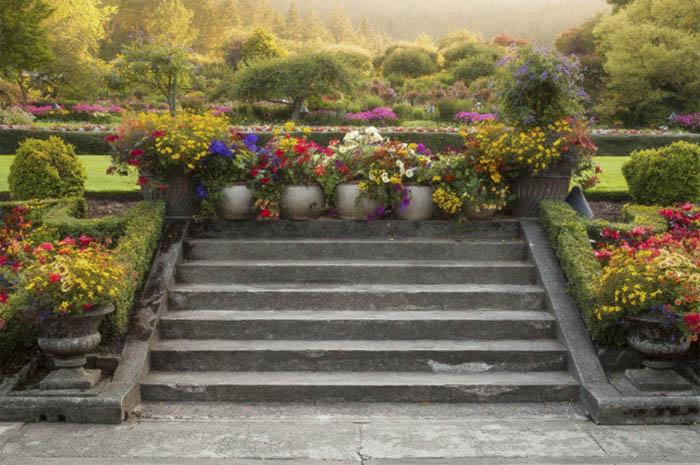 Summer Light Butchart Gardens