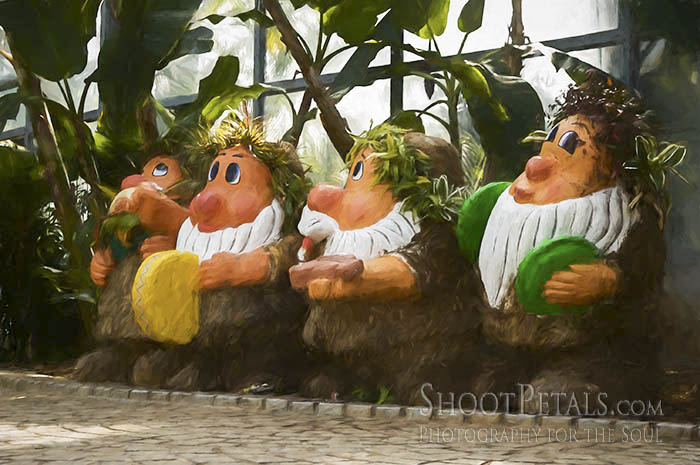 Tropical Fruits Garden 4 Dwarfs